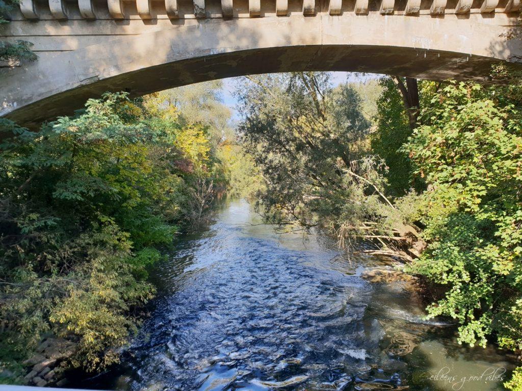 Flussaussicht, eileens good vibes, Kalorien Tracken