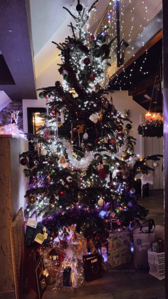 Monatsrückblick Dezember 2020 Weihnachtsbaum